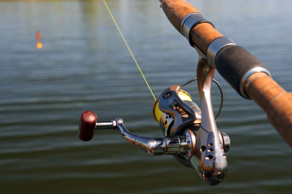 spinning reel fishing rod